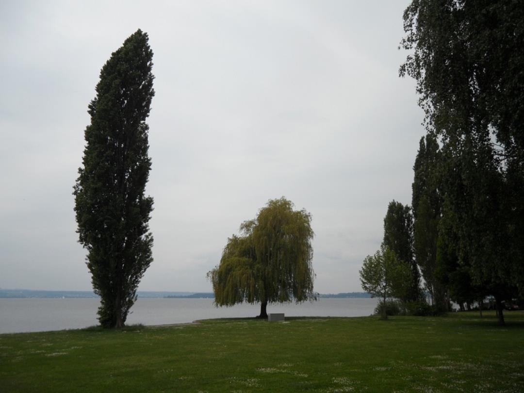 Bodensee1